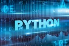 Concepto de Python Foto de archivo
