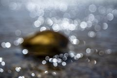 Concepto de tiempo de la playa del día de fiesta del destino del viaje con un mejillón en el agua Foto de archivo