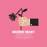 Concepto de Wither Rose In Hand Broken Heart Foto de archivo libre de regalías