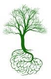 Concepto del árbol del cerebro Imagen de archivo