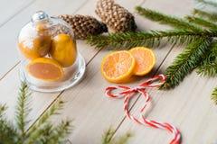 Concepto del Año Nuevo Decoraciones de la Navidad de ramas del abeto y de las frutas de la mandarina en fondo Fotografía de archivo libre de regalías