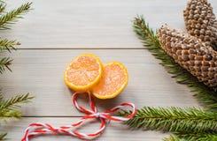 Concepto del Año Nuevo Decoraciones de la Navidad de ramas del abeto y de las frutas de la mandarina en fondo Imagen de archivo
