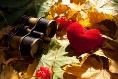 Concepto del amor. Foto de archivo