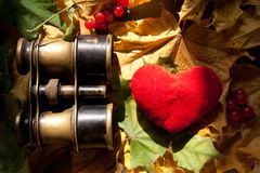 Concepto del amor. Imagen de archivo