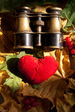 Concepto del amor. Imagenes de archivo