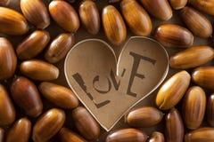 Concepto del amor. Foto de archivo libre de regalías