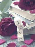 Concepto del amor Fotografía de archivo