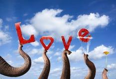 Concepto del amor Fotos de archivo