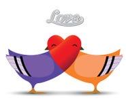 Concepto del amor del pájaro Fotos de archivo