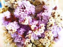 Concepto del amor Se arreglan las flores púrpuras secas y las flores blancas imagenes de archivo