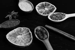 Concepto del arte de la comida Composición del condimento, cierre para arriba Sistema de especias, fondo gris Fotos de archivo libres de regalías