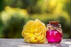 Concepto del balneario Bebida del amor Poción de amor Botella de elixir Aceite color de rosa y flor esenciales fotos de archivo