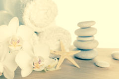 Concepto del balneario con apilado de las piedras, estrellas de mar, flores blancas Foto de archivo libre de regalías