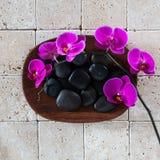 Concepto del balneario de la salud con los guijarros negros del masaje y las orquídeas rosadas Fotografía de archivo