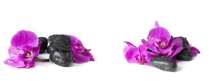 Concepto del balneario de orquídea violeta en piedras Imagen de archivo
