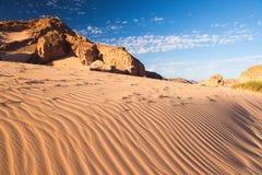 Concepto del calentamiento del planeta del fondo del paisaje del desierto Imagen de archivo libre de regalías