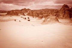 Concepto del calentamiento del planeta del fondo del paisaje del desierto Imagen de archivo