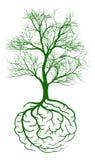 Concepto del cerebro de la raíz Fotografía de archivo libre de regalías