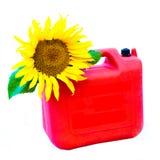 Concepto del combustible biológico Fotos de archivo libres de regalías