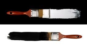 Concepto del contraste Fotografía de archivo
