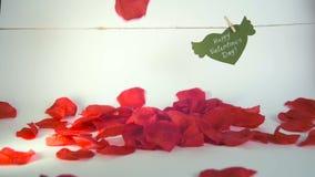 Concepto del día del ` s de la tarjeta del día de San Valentín Corazón del Libro Verde con las alas y la enhorabuena fijadas con  almacen de video
