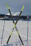 concepto del deporte de invierno del esquí del X-país Imágenes de archivo libres de regalías