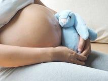 Concepto del embarazo La mujer embarazada está jugando la muñeca del conejo en su mano Imagen de archivo