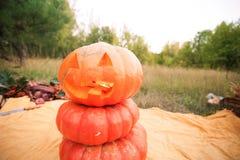 Concepto del festival Halloween Muchas calabazas, talladas en la calabaza Fotografía de archivo
