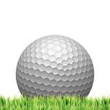 Concepto del golf Imágenes de archivo libres de regalías