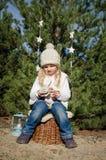 Concepto del invierno en bosque Imagen de archivo libre de regalías