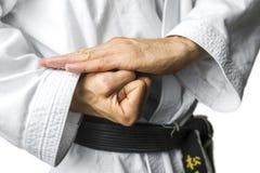 Concepto del karate Foto de archivo