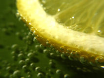 Concepto del limón fotografía de archivo