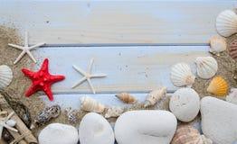 Concepto del mar de la playa del verano Fondo de madera blanco con diversas cáscaras, piedras blancas y arena Sratfish rojos en e Fotos de archivo