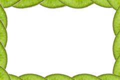 Concepto del marco de la fruta de kiwi Imagen de archivo
