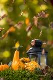 Concepto del otoño Imagenes de archivo