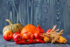 Concepto del otoño con las frutas y verduras estacionales Foto de archivo