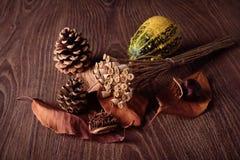 Concepto del otoño en fondo de madera Imágenes de archivo libres de regalías