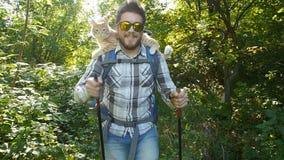 concepto del recorrido Un backpacker masculino joven está viajando con su gato metrajes