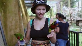 Concepto del ser humano y de la naturaleza del ambiente, pájaro del loro en la mano de la chica joven, mujer sonriente que juega  almacen de video