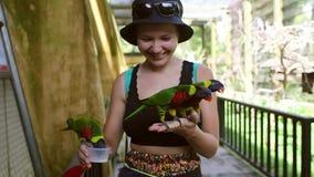 Concepto del ser humano y de la naturaleza del ambiente, pájaro del loro en la mano de la chica joven, mujer sonriente que juega  almacen de metraje de vídeo
