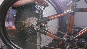 Concepto del servicio de la bicicleta Un hombre joven repara y mantiene una bicicleta almacen de metraje de vídeo
