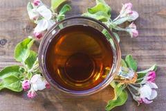 Concepto del té Imágenes de archivo libres de regalías