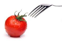 Concepto del tomate Imágenes de archivo libres de regalías