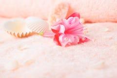 Concepto del viaje con el fucsia rosado delicado de la flor, conchas marinas Fotos de archivo