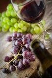 Concepto del vino Fotos de archivo
