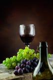 Concepto del vino Imagen de archivo libre de regalías