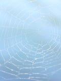 Concepto del Web Fotografía de archivo libre de regalías
