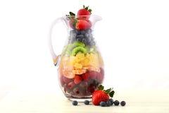Concepto del zumo de fruta fresca fotografía de archivo libre de regalías