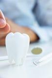 Concepto dental Imágenes de archivo libres de regalías