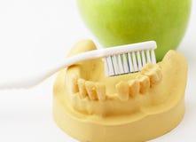 Concepto dental de la atención sanitaria Imagen de archivo